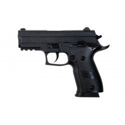 Stinger 229 Blowback  Co2